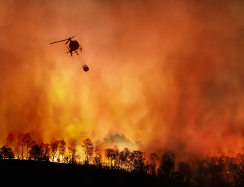 Incendios forestais, como evitalos e como protexerse ante eles